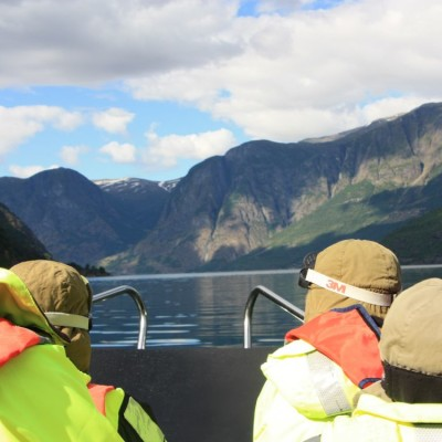 Norwegian Fjord Safari